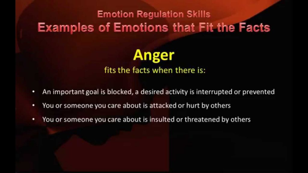 DBT Peer Connections Check the Facts of Emotional Responses