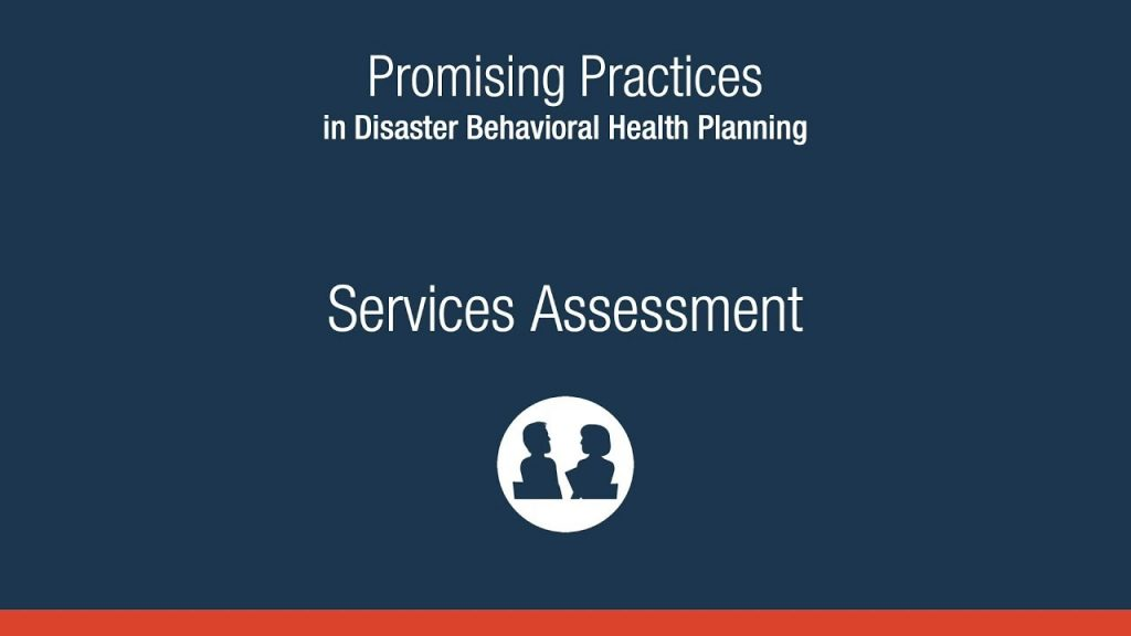 Promising Practices in Disaster Behavioral Health Planning: Services Assessment