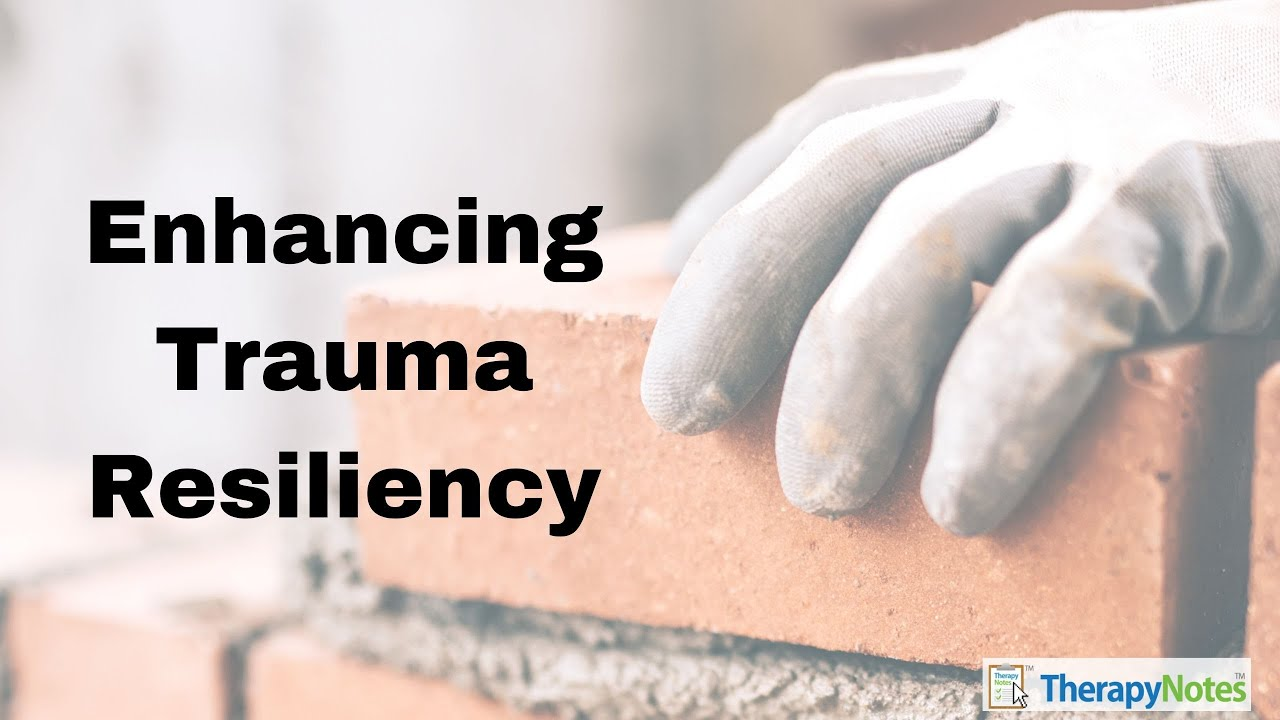 Enhancing Trauma Resiliency with Dr. Dawn Elise Snipes
