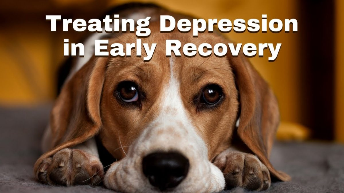 Treatment Planning for Depression