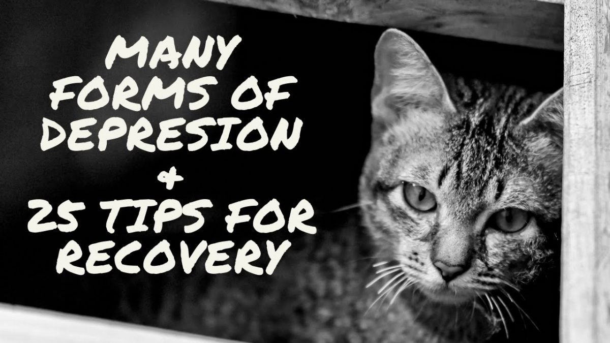 Many Forms of Depression and 25 Tips for Recovery