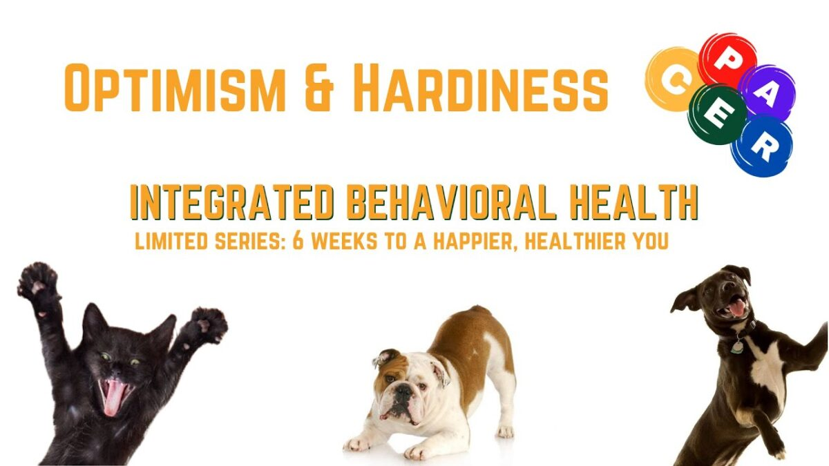 Optimism and Hardiness | 6 Weeks to a Happier Healthier You