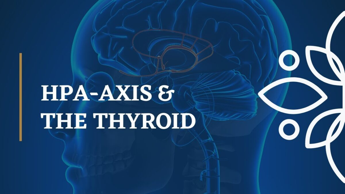 Impact of HPA-A Axis Dysfunction on the Thyroid, Mood and Health